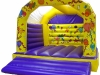bouncy-castle-hire-cork-teenage-bouncer