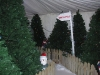christmas-themed-event-manager-cork-8