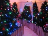 christmas-themed-event-manager-cork-9